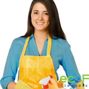 apartment cleaning lady New Westminster